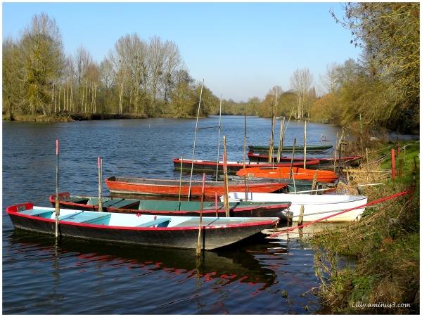 Les barques...