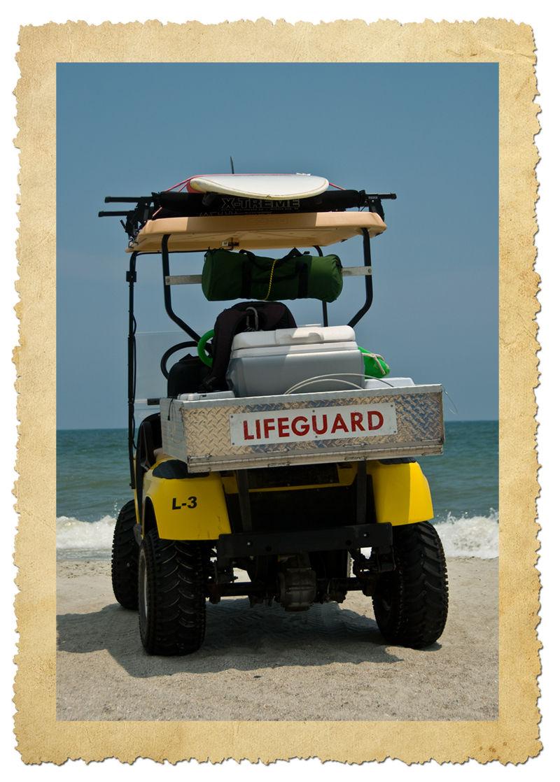 lifeguard, quote by Wyslawa Szymborska