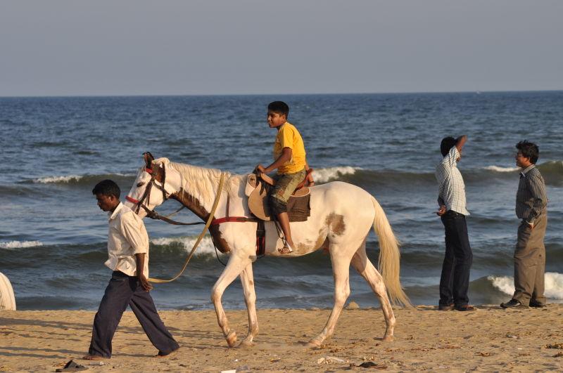 riding the pony