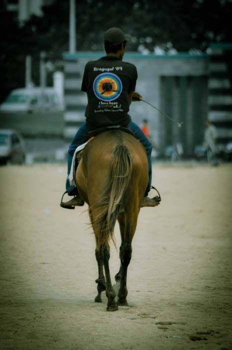 horse ride...