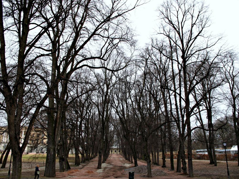 Oslo royal park