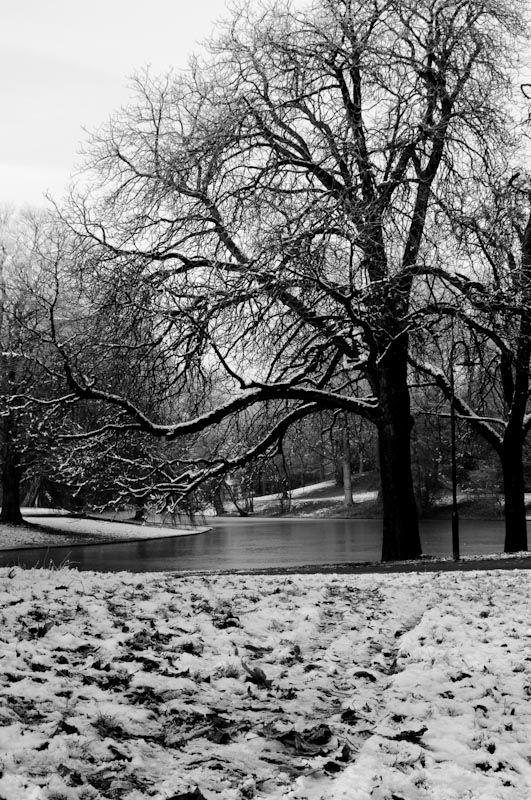 Park in Groningen, the Netherlands