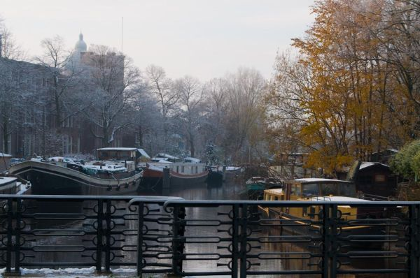 Autumn and Winter at the same shot