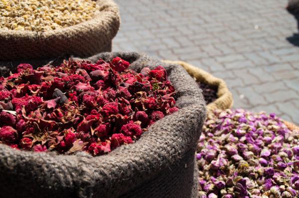 Dry flowers, Marrakech