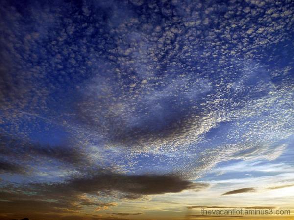 Mottled Sky