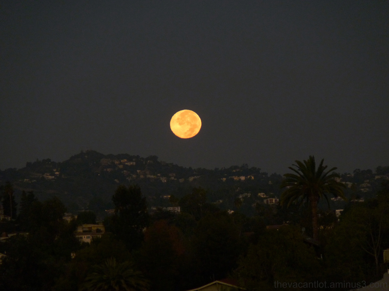 moon over hollywood