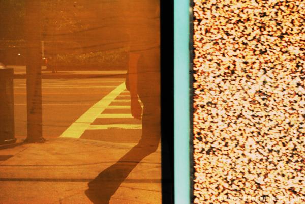 Self Portrait In A Bank Window
