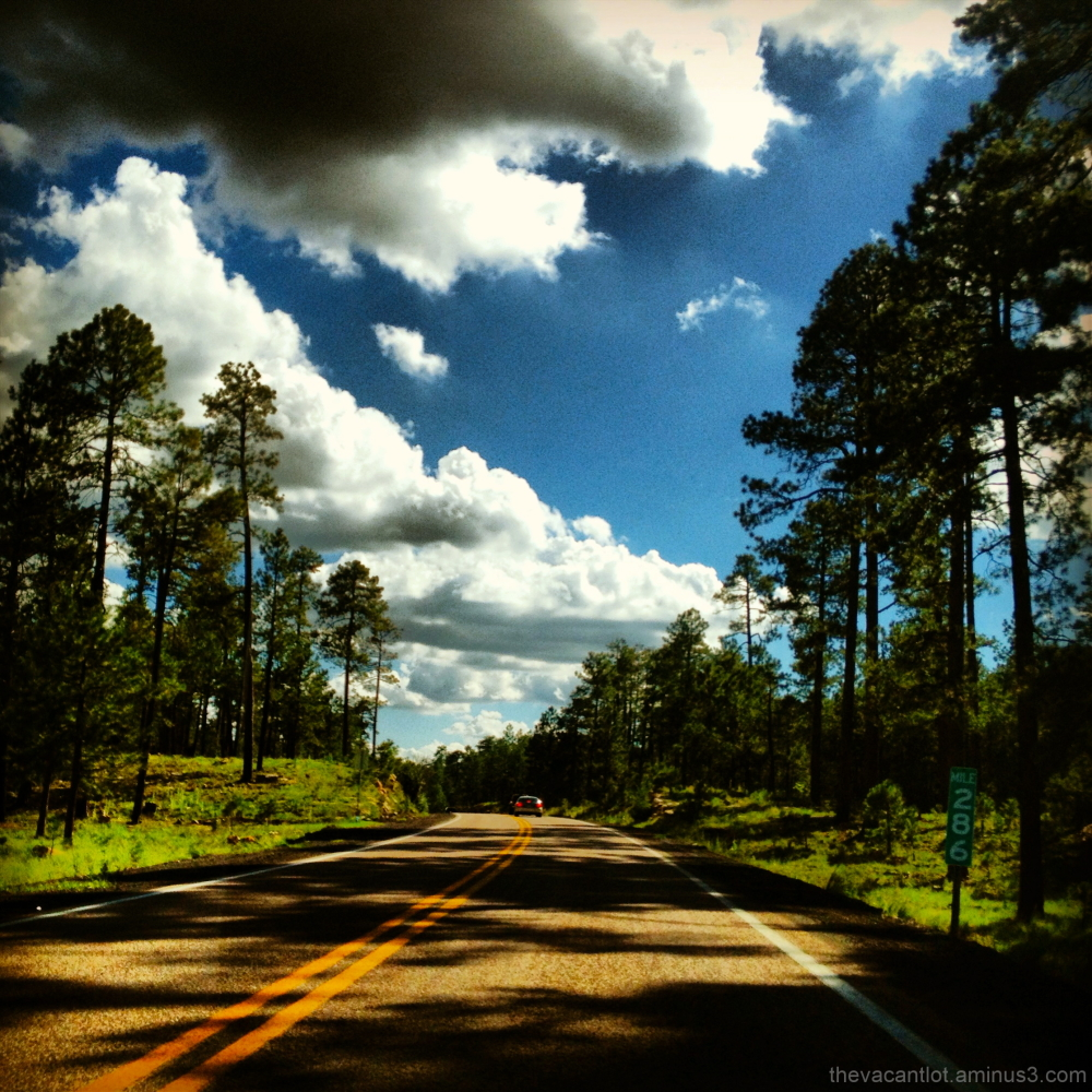 Leaving The Apache National Forest