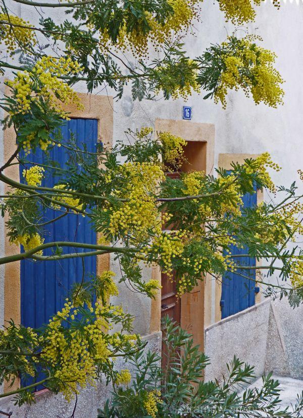 16 rue du mimosa a Ventabrun