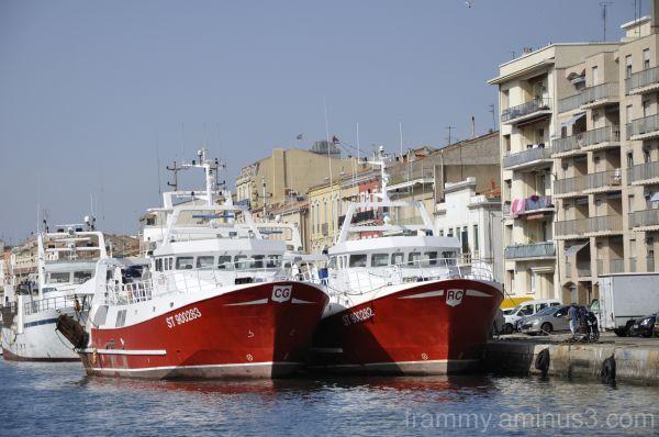 bateaux à Sète 2