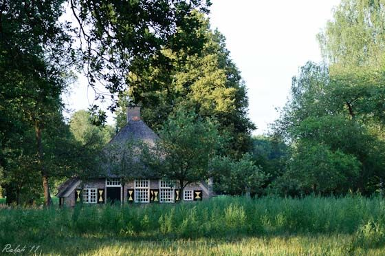 boerderij,nikon,D90,tamron