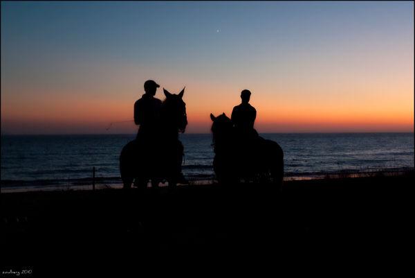 beach jockeys