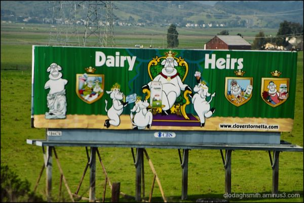 dairy heirs