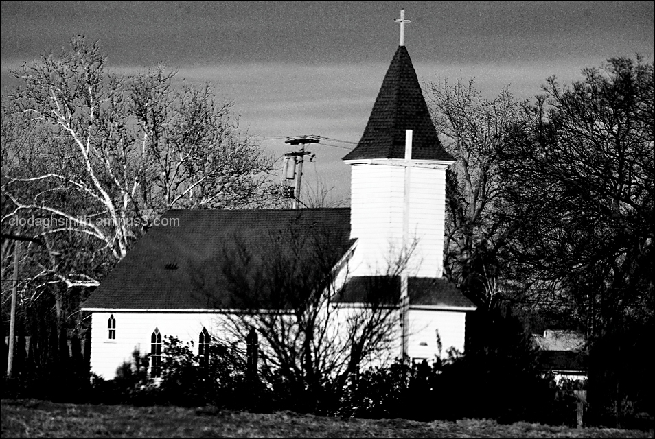 white church and trees