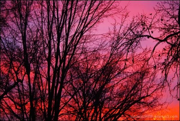 sacramento sunset 2