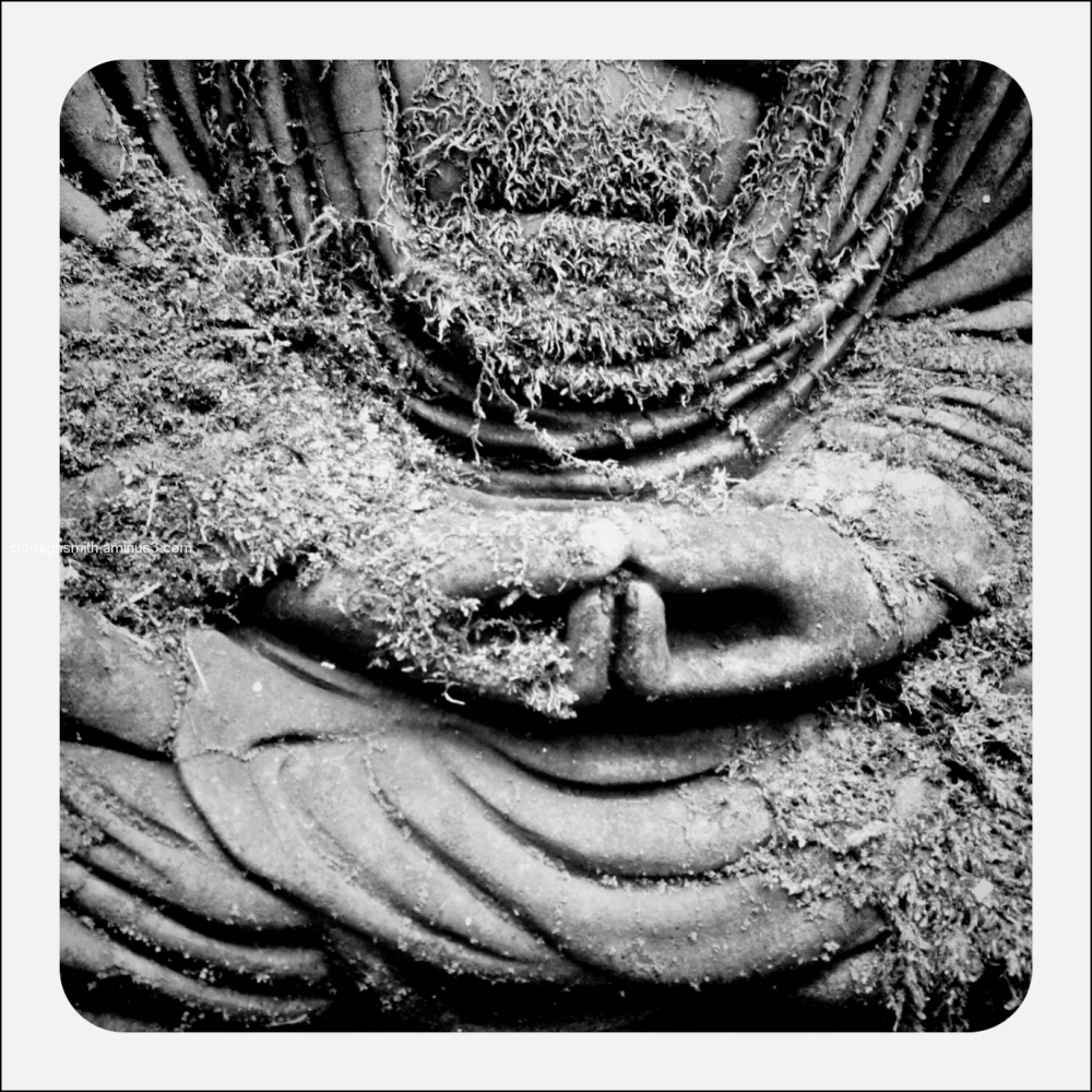 mossy buddha