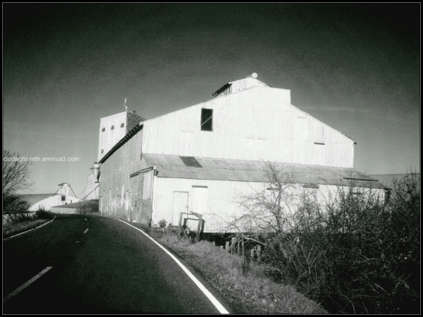 ryer island road, sacramento river delta
