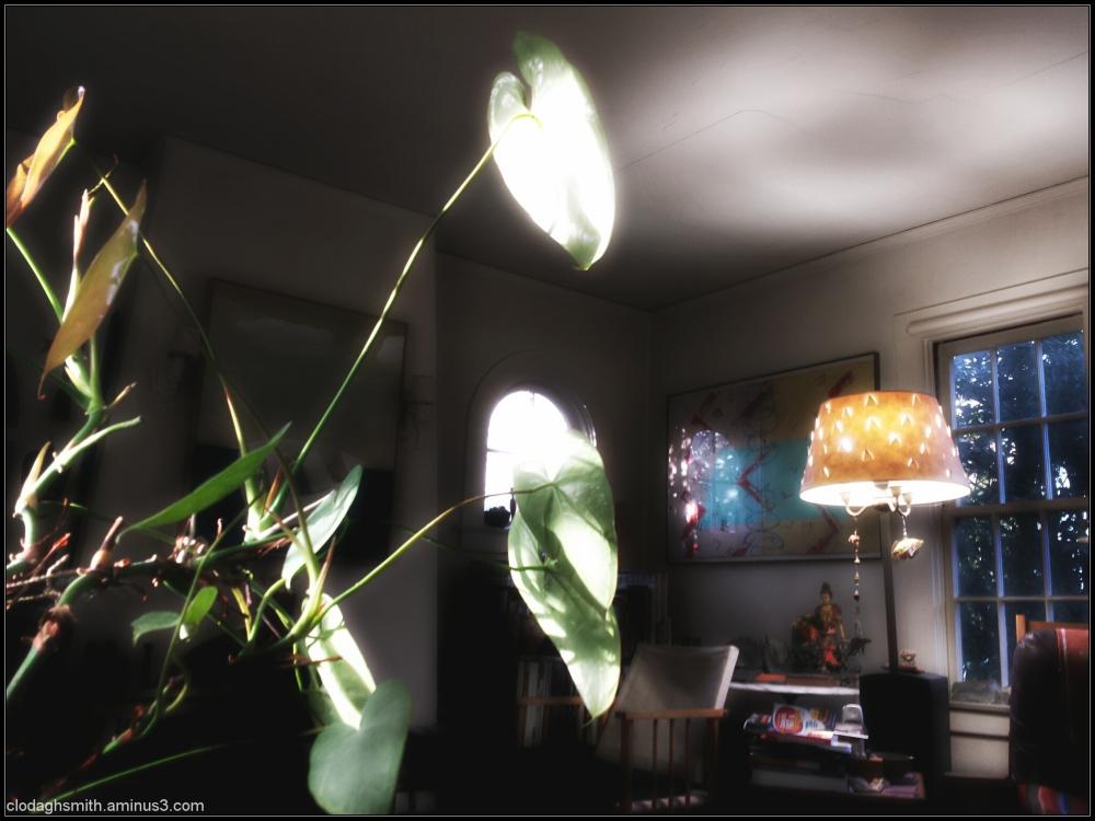 les jeux de lumière