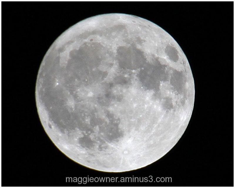 Full moon over Ft. Lauderdale - 02/18/11