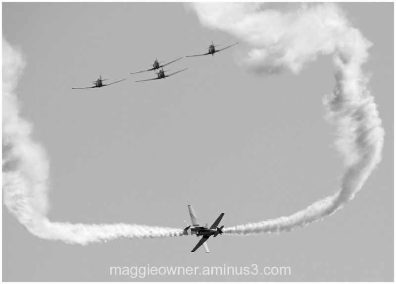 Vintage fighters in B&W