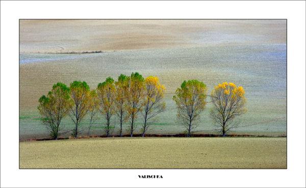 Colores de noviembre