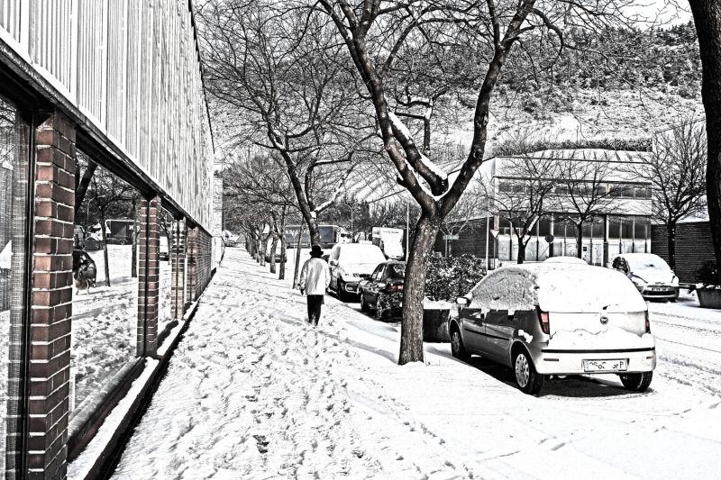 ....Y nieva