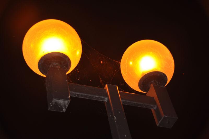 Between lamps