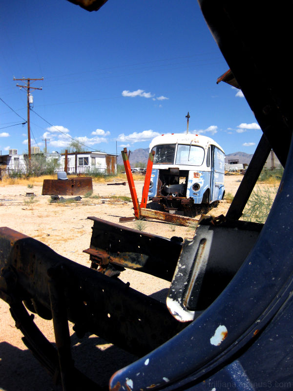 yucca junkyard #1