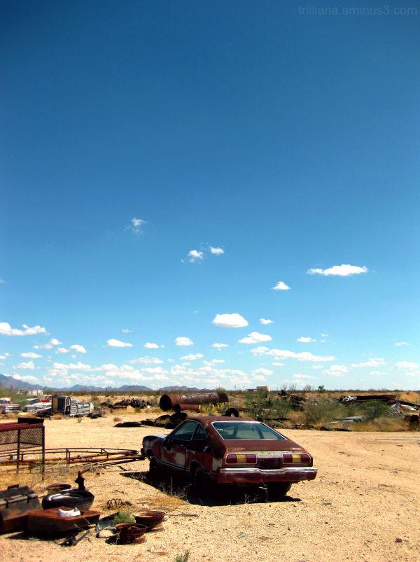 yucca junkyard #3