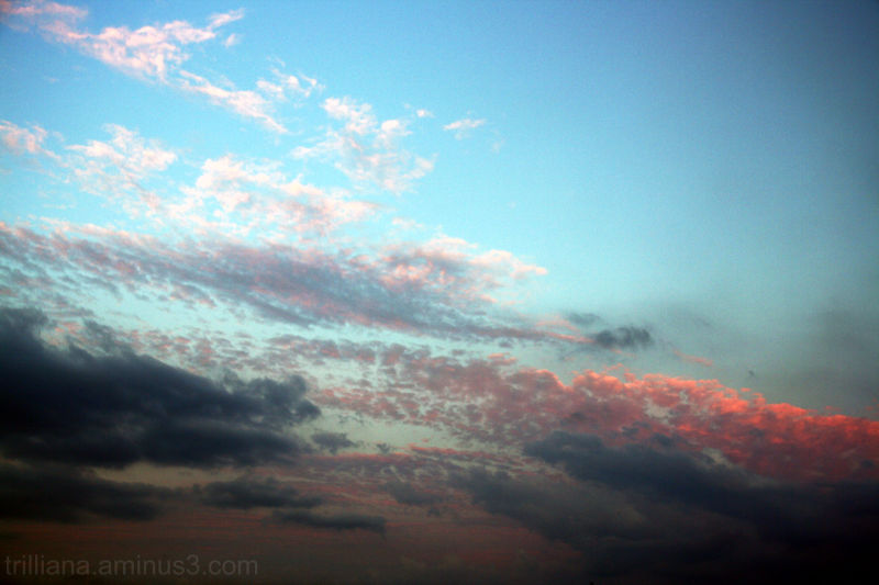 baltic sky series ends pink