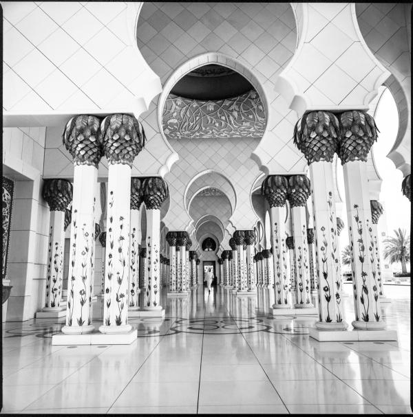 sheik zayed grand mosque #5