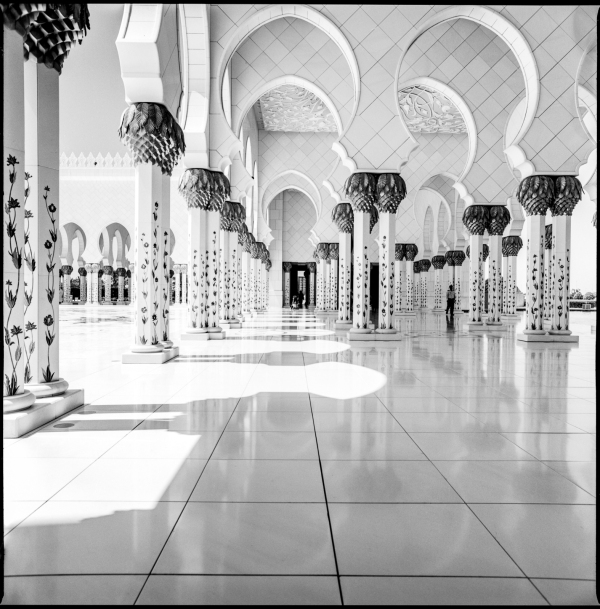 sheik zayed grand mosque #9