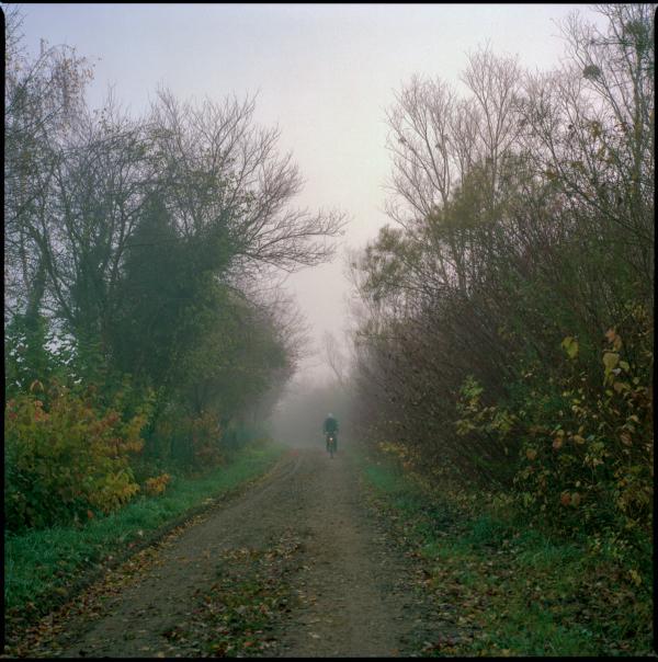 one foggy morning #1