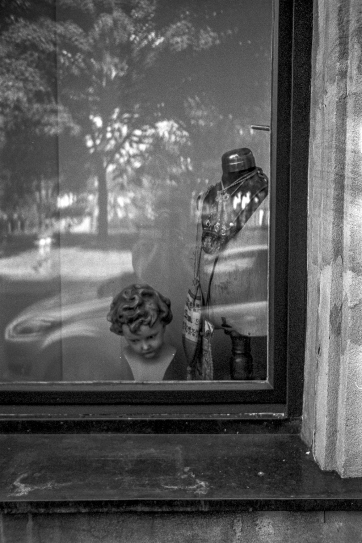 a look in a window #1