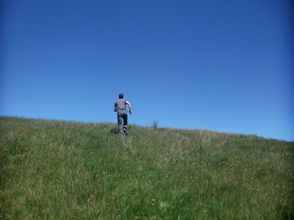 Day 285 - Harry on a hill