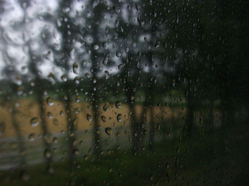 Day 344 - Raindrops on my window