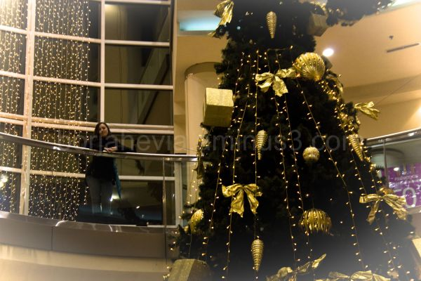 Christmas in Oviedo, by An