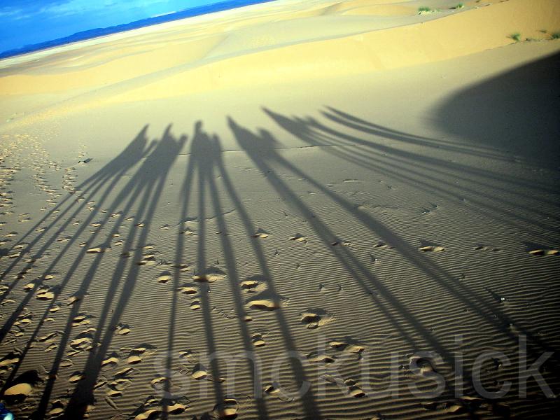 shadows sand dunes morocco