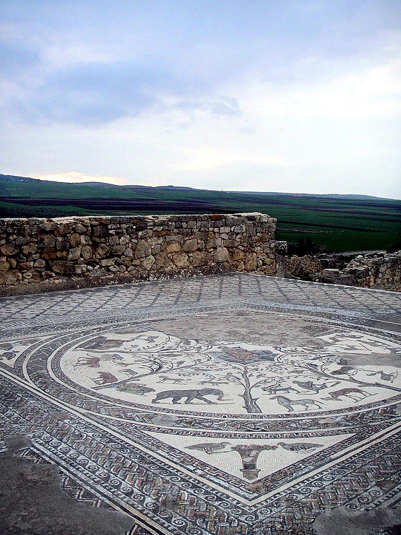 roman ruin,morocco