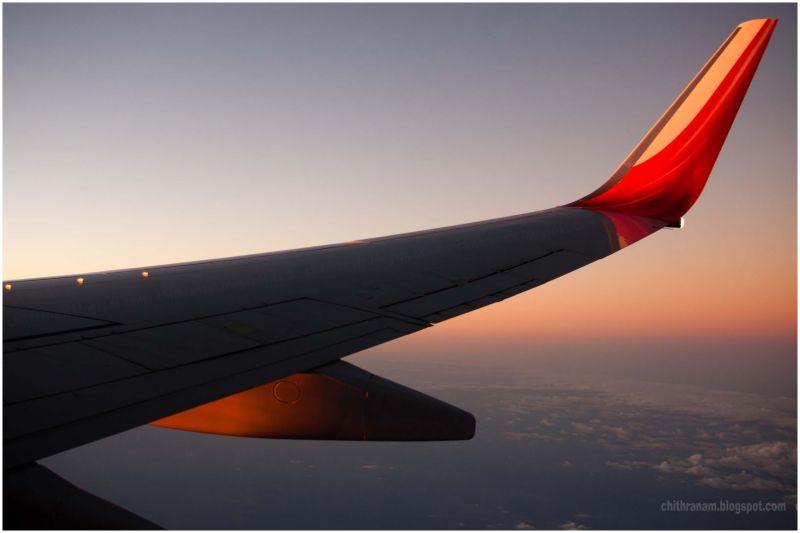 Across The Wings