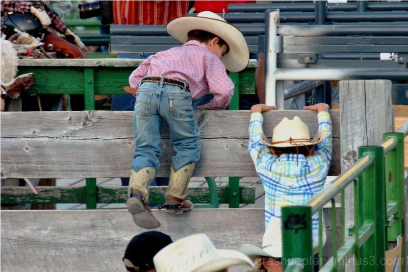 Little Cowboys I