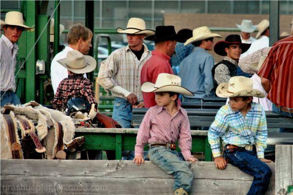Little Cowboys II