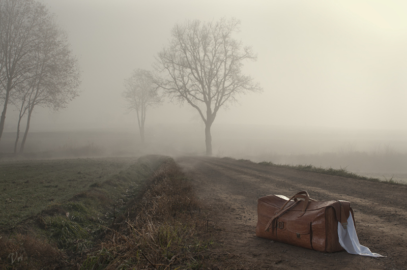 A suitcase in an autumm suitcase