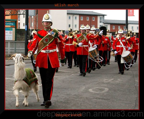 Welsh march,wales photo, social documentary photo