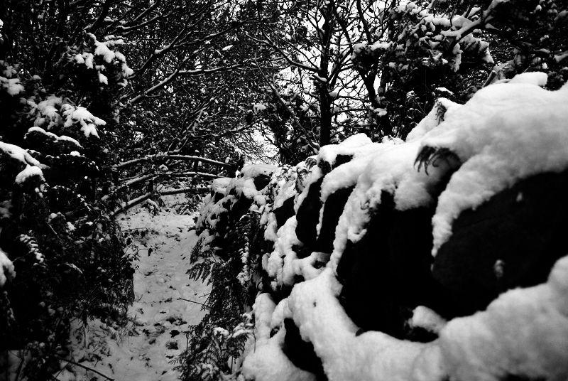 snow stone wall