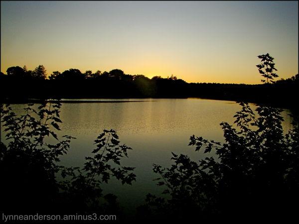 Sunset in Melrose