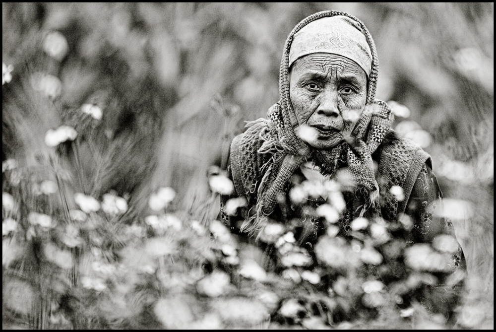 portrait of a vietnamese woman farmer
