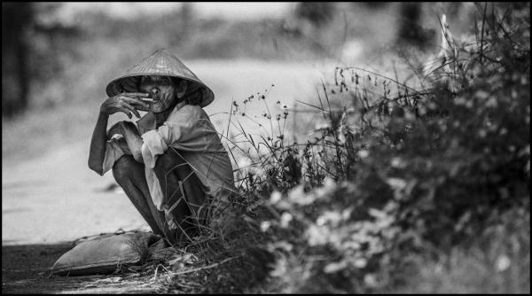 portrait of a vietnamese farmer