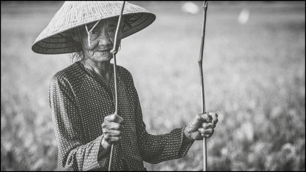 Vietnamese woman in the street