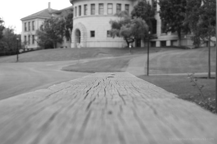 Wood focus close up